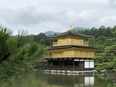 フランス人と巡る関西  京都