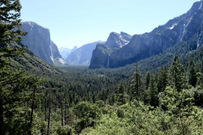 西海岸 絶景「ヨセミテ国立公園」と グルメの旅!