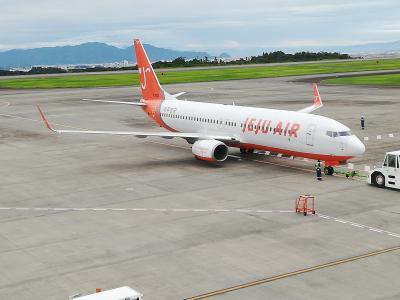 静岡空港から入国