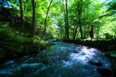 高湯天空の宿から吾妻の春霞眺望。水林自然林と四季の里。そしてスィーツ!