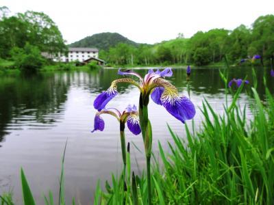 長電沿線の旅(須坂・志賀高原・渋温泉・小布施)