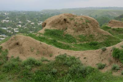 2019春、ウズベキスタン等の旅(20/52):4月25日(6):ペンジケント(6):ペンジケント遺跡、遺跡散策