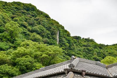 濃碧の鹿児島(霧島・桜島・指宿・仙巌園)