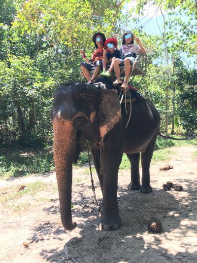 10連休GW★タイのサムイ島からタオ島へのんびりビーチの旅⑧タイといえば象乗り
