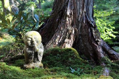 のんびり京都旅行(その2 大原編)