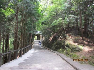 四国霊場・徳島編(19)札所第二十番鶴林寺を下山する。