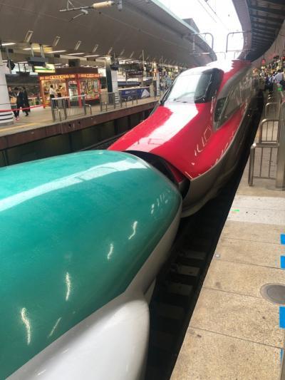 2019年6月  3歳子連れ、東京母子旅行① ~小鉄の東京駅、新幹線見学~