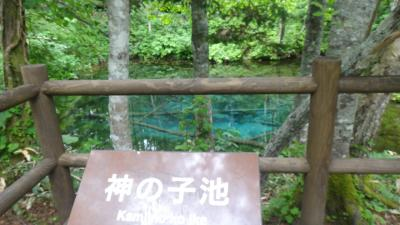 中標津6月 展望台めぐりと野天湯(からまつの湯・川北温泉)