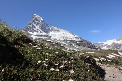スイス 花と絶景の旅 ⑦シュヴァルツゼーからフーリまでハイキング