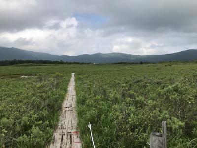 どこかにマイルで八甲田山へ① 湿原を歩き、秘湯で癒される