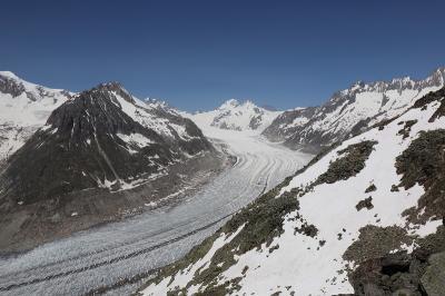 スイス 花と絶景の旅 ⑧フィエッシュ 世界遺産アレッチ氷河