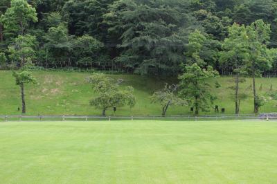 日帰り癒し旅 in メナード青山リゾート(ラベンダー&ユリフェスタ)