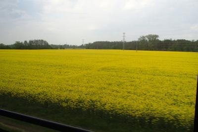 2019年東ヨーロッパの旅 vol.6 プラハからクトナー・ホラまで列車からの車窓