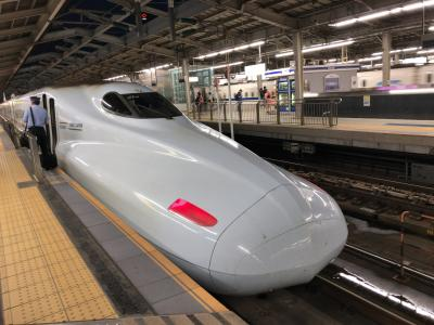 2019年夏九州北部鉄道旅行18(新幹線・特急乗り継いで帰途)