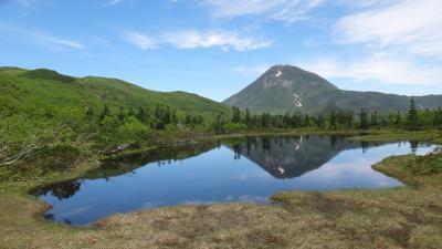 知床6月・羅臼湖への木道を長靴で歩く