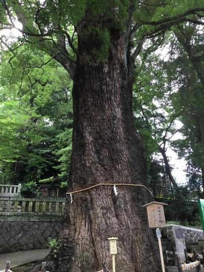 東京から車で愛知へ日帰り出張 帰りが遅くなり湯河原に一泊しました!