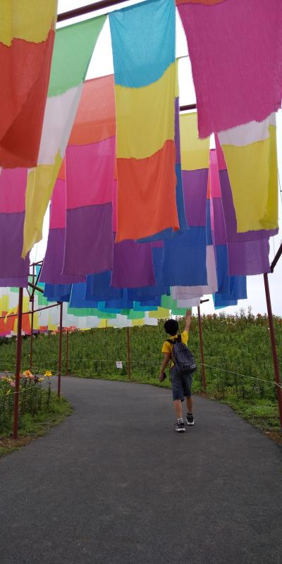 箱館山ゆり園から琵琶湖を臨む