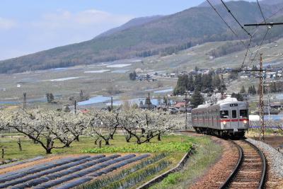 宇木の古代桜めぐり2019~山里に咲き誇る桜の名木と信濃平の眺望~(長野)