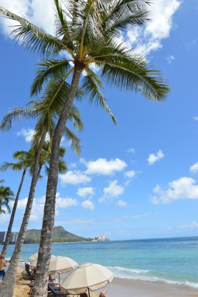 2019_ハワイ旅行記
