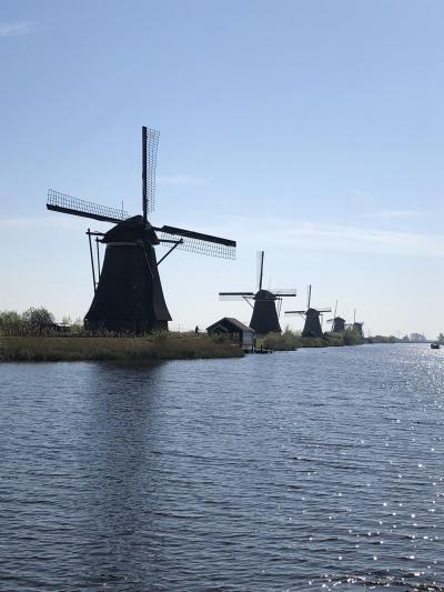4月のベルギー&オランダの旅 ルーヴェンとキンデルダイク