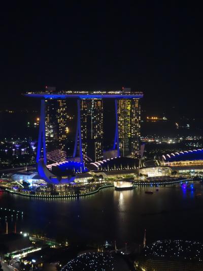 甥っ子5歳と初シンガポール 前半