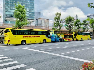 2019年6月 3歳子連れ、東京母子旅行② ~しまじろうコンサート&はとバスに乗るぞ!~