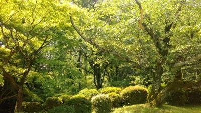 愛知県森林公園 植物園 植樹祭記念