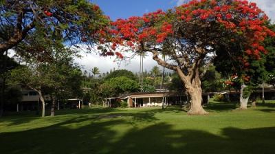 初めてマウイ島 ④ ロイヤルラハイナリゾートPartⅡ