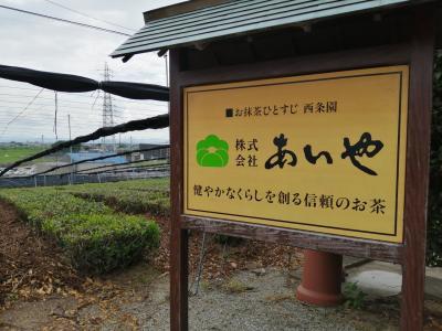 三河の小京都:西尾市1Dayトリップ(お茶めぐり編)