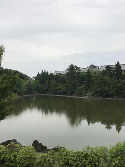 奈良でまったり!