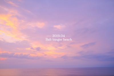 2019.04 魅惑の離島★Lembongan/Cenigan/Penida trip 2 [バリ島binginビーチ編]