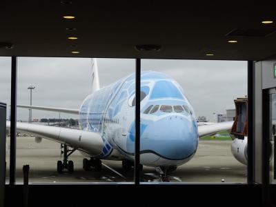 フライングホヌ(A380)で行くハワイ旅行 -1日目-