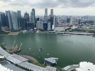 シンガポールで新しいことをしてみたら・・・