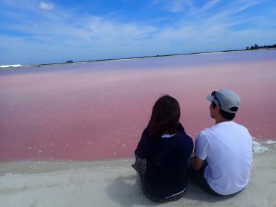 白とピンクのグラデーション