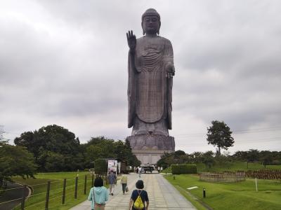 茶の木村園で日光天然氷のかき氷と青銅製立像で高さ世界一ギネス認定の牛久大仏