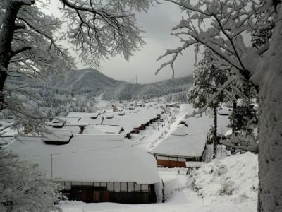 日光東照宮・雪の大内宿ツアー