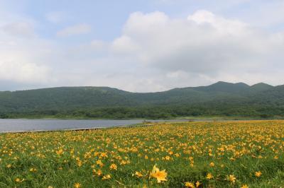 天気予報に翻弄、ニッコウキスゲを見に、結局雄国沼の遊歩道を3周しました