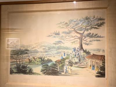 7月の沖縄 のこり 世界遺産の続き。座喜味城跡へ。(続)南山城跡、沖縄ワールドなど。