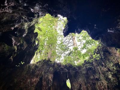 2019年7月 世界自然遺産屋久島への旅 2日目縄文杉トレッキング