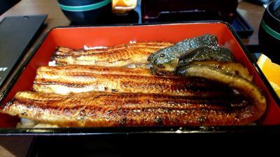 神田で、うなぎ!「きくかわ」さんで食べてきました