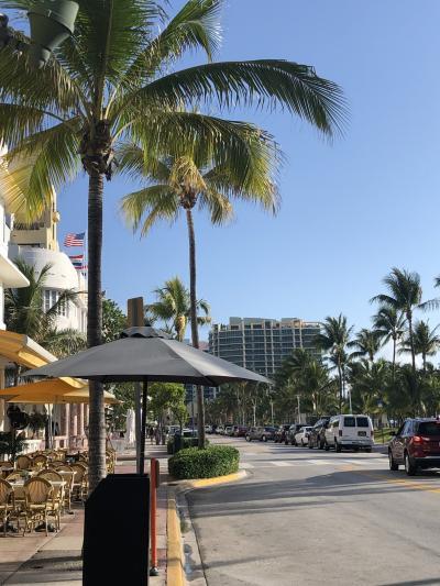 ニューヨーク&カリブ海&マイアミの2週間 ⑪ ~マイアミ WYNWOOD/ウォールペイント編~