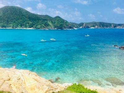 【ひとり旅】ウミガメと泳ぎたくて、沖縄の渡嘉敷島に行ってきました!(2019.7.11-15)
