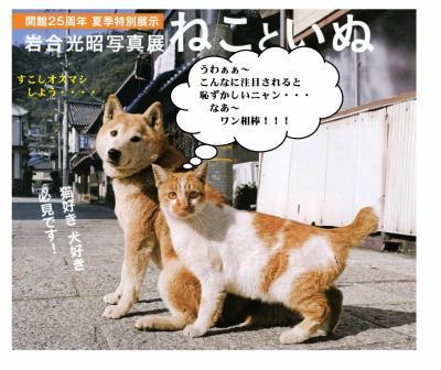 8月25日。岩合光昭写真展と岩合さんの講演会ならびにサイン会開催!!
