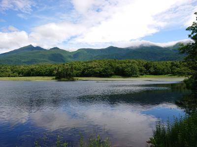 道東、道央の旅2日目 知床五湖やカムイワッカ湯の滝登り。そして網走へ