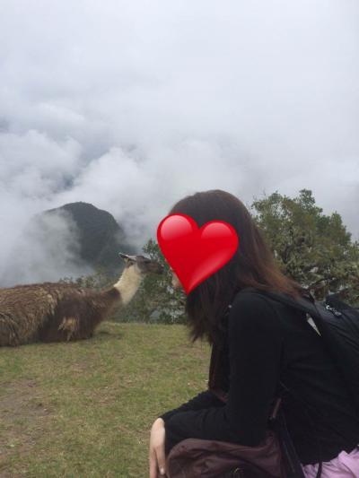 南米卒業旅行①初めてのペルーへ 念願のマチュピチュに向かう