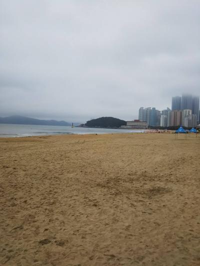 韓国・釜山・海雲台グルメ旅行