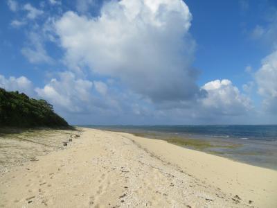 全く日陰の無い炎天下のプライベートビーチ1500mを何も目的も無く、ただひたすら歩いた♪島影は新城島♪2019年7月八重山・黒島8泊9日25