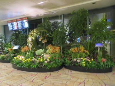 シンガポール 「行った所・見た所」 ブギスで食事をしてからチャンギ国際空港へ行きました