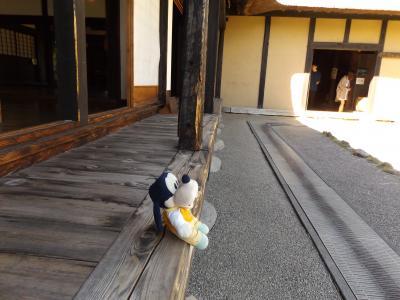 グーちゃん、つなぎ温泉へ行く!(御所湖、キクバナ・シモンとの出会い編)