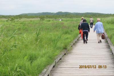 北海道道東の旅⑩釧路湿原散策